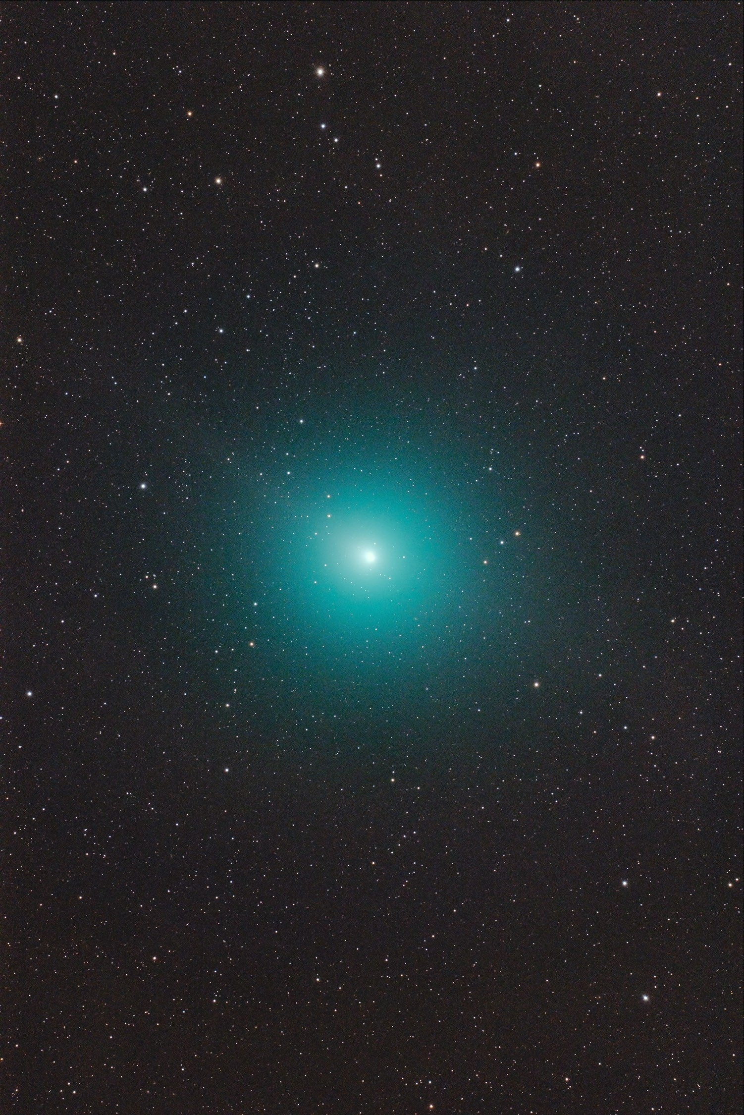 Application image: Komet 46P/Wirtanen with Baader Apo95 + D810A by C. Kaltseis