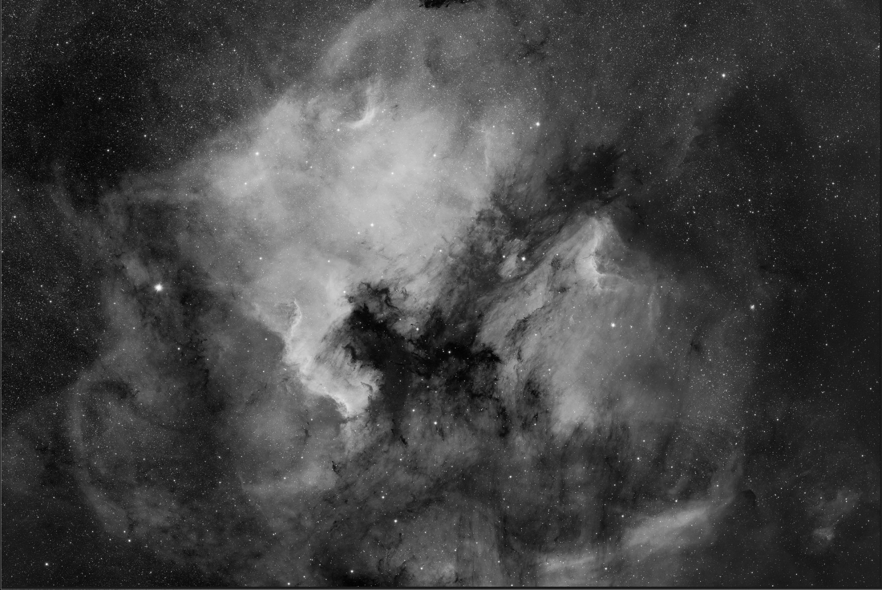 "Application image: NGC 7000, RASA 8"" with QHY600M EB +Baader 7nm Halpha Filter,  11x270sec, (c) Michael Jäger"